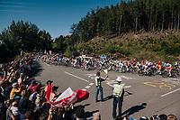 peloton cheered on<br /> <br /> MEN ELITE ROAD RACE<br /> Kufstein to Innsbruck: 258.5 km<br /> <br /> UCI 2018 Road World Championships<br /> Innsbruck - Tirol / Austria