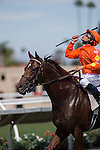 AUG 24,2014:Tom's Tribute,ridden by Mike Smith,wins the Del Mar Mile at Del Mar in Del Mar,CA. Kazushi Ishida/ESW/CSM