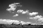 Europa, DEU, Deutschland, Nordrhein Westfalen, NRW, Rheinland, Niederrhein, Duisburg, Deich, Rheindeich, Radfahrer, Fahrradfahrer, Himmel, Wolken, Cumuluswolken, Kategorien und Themen, Freizeit, Freizeitaktivitaet, Freizeitaktivitaeten, Wetter, Himmel, Wolken, Wolkenkunde, Wetterbeobachtung, Wetterelemente, Wetterlage, Wetterkunde, Witterung, Witterungsbedingungen, Wettererscheinungen, Meteorologie, Bauernregeln, Wettervorhersage, Wolkenfotografie, Wetterphaenomene, Wolkenklassifikation, Wolkenbilder, Wolkenfoto<br /> <br /> <br /> [Fuer die Nutzung gelten die jeweils gueltigen Allgemeinen Liefer-und Geschaeftsbedingungen. Nutzung nur gegen Verwendungsmeldung und Nachweis. Download der AGB unter http://www.image-box.com oder werden auf Anfrage zugesendet. Freigabe ist vorher erforderlich. Jede Nutzung des Fotos ist honorarpflichtig gemaess derzeit gueltiger MFM Liste - Kontakt, Uwe Schmid-Fotografie, Duisburg, Tel. (+49).2065.677997, <br /> archiv@image-box.com, www.image-box.com]