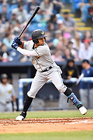 West Virginia Power shortstop Joseph Rosa (2) at bat during a game against the Asheville Tourists at McCormick Field on April 18, 2019 in Asheville, North Carolina. The Power defeated the Tourists 12-7. (Tony Farlow/Four Seam Images)