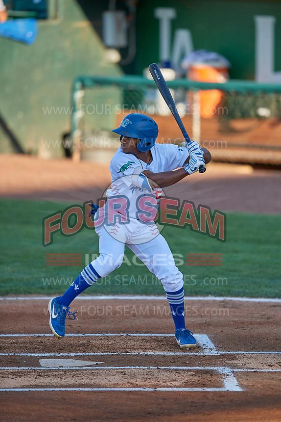 Aldrich De Jongh (5) of the Ogden Raptors at bat against the Missoula Osprey at Lindquist Field on August 12, 2019 in Ogden, Utah. The Raptors defeated the Osprey 4-3. (Stephen Smith/Four Seam Images)