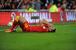 FIFA 2014 World Cup Qualifying Match - Wales v Macedonia at the Cardiff City Stadium : Hal Ronson Kanu of Wales lies on the floor after a tackle.