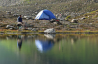 Man sitting beside tent and alpine lake, near Yellow Aster Butte, North Cascades, Whatcom County, Washington, USA.