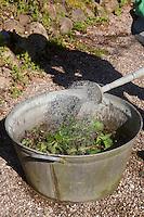 Brennnessel-Jauche, Brennnesseljauche, Brennnessel-Brühe, Brennnesselbrühe, Pflanzenbrühe, Pflanzen-Brühe, Brennnesseln werden in Wasser gegeben, die Brühe dient zur biologischen Bekämpfung von Pflanzenschädlingen und als pflanzlicher Dünger