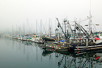 Boats in the harbor during a foggy morning, Monterey, California