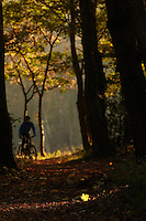 Sam Behr  riding Marin mountain bike , Surrey  , November 2011 pic copyright Steve Behr / Stockfile