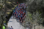 The peloton during Stage 1 of Tirreno-Adriatico Eolo 2021, running 156km from Lido di Camaiore to Lido di Camaiore, Italy. 10th March 2021. <br /> Photo: LaPresse/Marco Alpozzi   Cyclefile<br /> <br /> All photos usage must carry mandatory copyright credit (© Cyclefile   LaPresse/Marco Alpozzi)