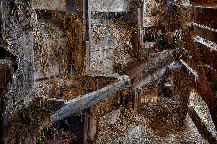 Livestock feeding trough in old barn.