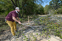 Jacob Smith, a worker with NWA Trailblazers, trims trees along the race course Friday, Oct. 8, 2021, while preparing for racing at Centennial Park in Fayetteville. Union Cycliste Internationale will host a World Cup cyclocross event at the park on Wednesday. City officials expect a turnout of about 2,500 people. The event will be followed by the UCI Cyclocross World Championships to be held Jan. 28-30. Visit nwaonline.com/211009Daily/ for today's photo gallery.<br /> (NWA Democrat-Gazette/Andy Shupe)