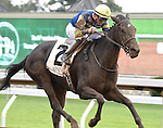 Leigh Court (no. 2), ridden by Gary Boulanger and trained by Josie Carroll, wins the 34th running of the grade 2 Thoroughbred Club of America Stakes for fillies and mares three years old and upward on October 04, 2014 at Keeneland in Lexington, Kentucky.  (Bob Mayberger/Eclipse Sportswire)