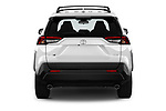 Straight rear view of a 2019 Toyota RAV4 XLE Premium 5 Door SUV stock images