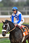 HOT SPRINGS, AR - MARCH 17: #7 Sporting Chance with jockey John Velazquez .Rebel Stakes at Oaklawn Park on March 17, 2018 in Hot Springs, Arkansas. (Photo by Ted McClenning/Eclipse Sportswire/Getty Images)