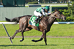 Western Aristocrat & Cory Nakatani win the Grade I Jamaica Handicap for three year olds on the turf.  Trainer Jeremy Noseda.  Owner Vinery Stables.