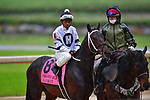 April 11, 2020: Bankit (8) with jockey Ricardo Santana, Jr. aboard during the Oaklawn Mile Stakes at Oaklawn Racing Casino Resort in Hot Springs, Arkansas on April 11, 2020. Ted McClenning/Eclipse Sportswire/CSM  Oaklawn Heritage race at Oaklawn Racing Casino Resort  on April 11, 2020 in Hot Springs, Arkansas. (Photo by Ted McClenning/Eclipse Sportswire/Cal Sport Media)