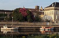 Europe/France/Poitou-Charentes/16/Charente/Jarnac: La Charente