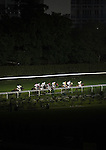 HONG KONG, CHINA - SEPTEMBER 16:  Runners in action at the Race 6 during the first night of horses races of the 2009/10 seasson at the Happy Valley racecourse in Hong Kong. The coming 2009/10 racing season marks the 125th Anniversary of The Hong Kong Jockey Club, which since its establishment in 1884. Photo by Victor Fraile / The Power of Sport Images