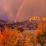 Rainbow, Piute Crags,  Muir Wilderness, Inyo National Forest, Eastern Sierra, California