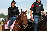 LOUISVILLE, KY - MAY 04:  Land Over Sea (Bellamy Road x Belle Watling, by Pulpit) walks onto the Churchill Downs (Louisville KY) track ridden by Jonny Garcia in preparation for the Kentucky Oaks. Owner Reddam Racing LLC, trainer Doug F. O'Neill. (Photo by Mary M. Meek/Eclipse Sportswire/Getty Images)