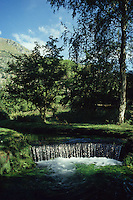 "Il Giardino di Ninfa si trova ai confini fra i territori comunali di Cisterna di Latina, Sermoneta e Norma..È dal 2000, un Monumento Naturale della Repubblica Italiana. Il Giardino che ospita esemplari di fauna e flora, raccolti in tutto il mondo, modellati secondo i principi del cosiddetto ""giardino all'inglese"", sorge sulle rovine di un'antica città medievale..The Garden of Ninfa is located on the border between the municipalities of Cisterna di Latina, Sermoneta and Norma. .Since 2000 is Natural Monument of the Italian Republic. The Garden that houses samples of fauna and flora, collected all over the world, is modeled on the principles of ""garden"", situated on the ruins of an ancient medieval city..."