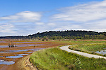Trail Atop Dike, Nisqually River Delta, Nisqually National Wildlife Refuge, Washington State.  Dikes formerly drying land for agricultural use have been breached, allowing resotoration of tidal marshes and flats as habitat for Puget Sound marine species.
