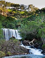 Tourist visiting Kilauea Falls, a gem of a waterfall even by Kauai standards