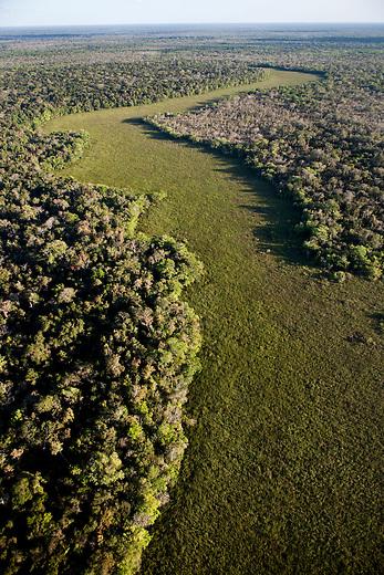 Overflight over Mayan Biosphere Reserve,