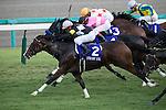 OCT 4 ,2015: Straight Girl,ridden by Keita Tosaki,wins the Sprinters Stakes at Nakayama in Chiba,Japan. Kazushi Ishida/ESW/CSM