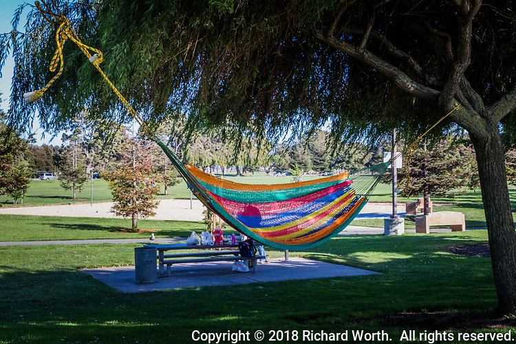 A brightly colored hammock floats in the breeze, near a picnic table filled with picnic fare.  The last days of summer.