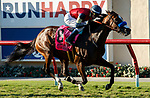 DEL MAR, CA  SEPTEMBER 4: #8 Going to Vegas, ridden by Flavien Prat, alone in the stretch of the John C. Mabee Stakes (Grade ll) on September 4, 2021, with Del Mar Thoroughbred Club in Del Mar, CA.  (Photo by Casey Phillips/Eclipse Sportswire/CSM)