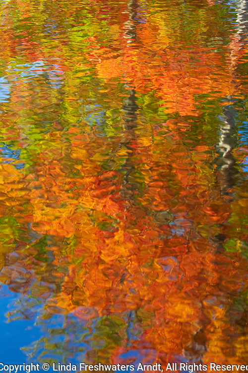 Autumn's colors reflected in a body of water in northern Wisconsin.