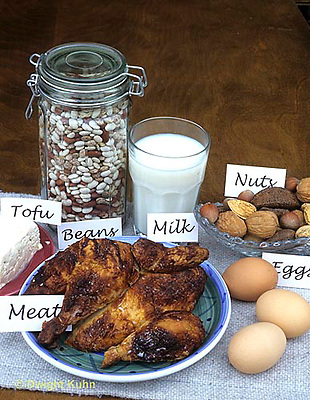 JA05-037x  Food - high in protein - eggs, meat, milk, tofu, beans. nuts