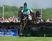 Fair Hill Races - 05/28/2016