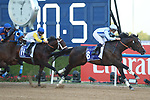 March 27, 2021: PANADOL, #8 ridden by Mikael Barzalona during the running of the UAE Derby on Dubai World Cup Day, Meydan Racecourse, Dubai, UAE. Shamela Hanley/Eclipse Sportswire/CSM