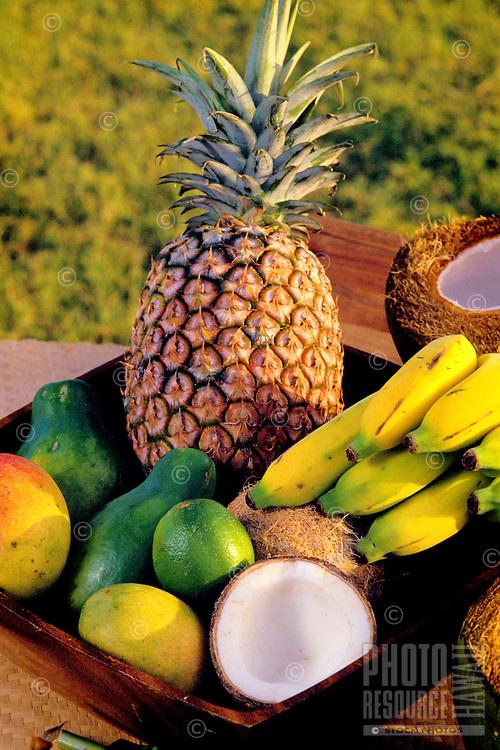 Island fruits: pineapple, banana, coconut, avocado, papaya and mango