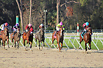 February 6, 2021: #9 CANDY MAN ROCKET and Jockey Junior Alvarado earn Kentucky Derby Points in the Grade III Sam F. Davis Stakes for Trainer Bill Mott at Tampa Bay Downs in Oldsmar, Florida on February 6, 2021. Delikat/Eclipse Sportswire/CSM