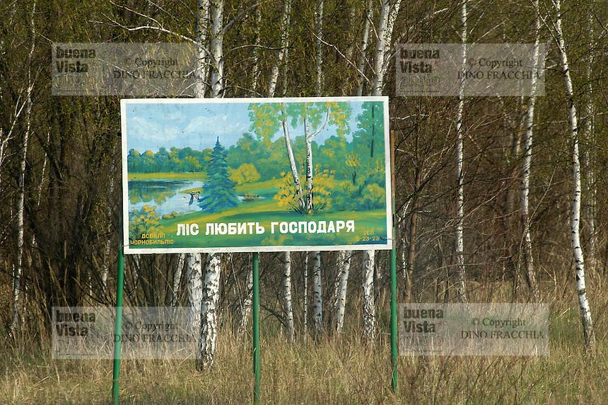 - 20 years from the nuclear incident of Chernobyl, forest of birches  inside the  limited access contaminated area of 30 kilometers around the place of catastrophe ....- 20 anni dall'incidente nucleare di Chernobyl, bosco di betulle all'interno della zona contaminata ad accesso limitato di 30 chilometri intorno al luogo della catastrofe