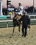 Will Take Charge and Luis Saez win the Clark Handicap at Churchill Downs, 11-29-13, for trainer D. Wayne Lukas and owner Willis Horton.