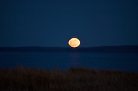 A full moon rising with a silhouette of a wind turbine in the foreground.
