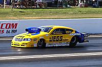 Jun. 1, 2013; Englishtown, NJ, USA: NHRA pro stock driver Jeg Coughlin Jr during qualifying for the Summer Nationals at Raceway Park. Mandatory Credit: Mark J. Rebilas-