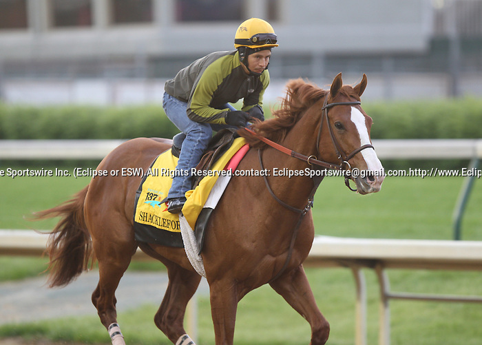 Shackleford, trained by Dale Romans, exercises under jockey Jon Court in preparation for the 137th running of the Kentucky Derby at Churchill Downs in Louisville, Kentucky to be run May 7, 2011.