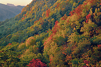 Catawba River Valley<br />   and Tablerock Mountain<br />   from the Blue Ridge Parkway<br /> North Carolina