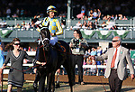 LEXINGTON, KY - October 14, 2017. #6 La Coronel and jockey Jose Lezcano win the 34th running of the Queen Elizabeth 2 Challenge Cup Presented by Lane's End, Grade 1 $500,000 for owner John Oxley and trainer Mark Casse at Keeneland Race Course.  Lexington, Kentucky. (Photo by Candice Chavez/Eclipse Sportswire/Getty Images)