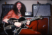 TED NUGENT (1977)