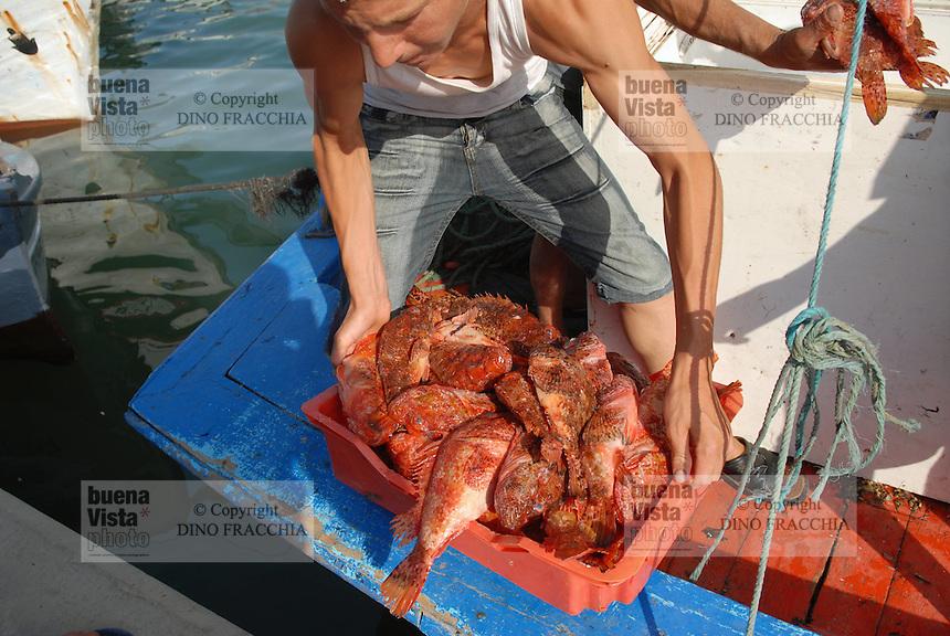 - fishermen and fishing boats in the port of  Tabarka town....- pescatori e pescherecci nel porto della città di Tabarka