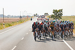 The peloton split to pieces after a huge crash during Stage 5 of La Vuelta d'Espana 2021, running 184.4km from Tarancón to Albacete, Spain. 18th August 2021.    <br /> Picture: Luis Angel Gomez/Photogomezsport   Cyclefile<br /> <br /> All photos usage must carry mandatory copyright credit (© Cyclefile   Luis Angel Gomez/Photogomezsport)