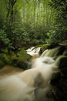 Rocky Fork cascades in summer, brown due to substantial logging operation at headwaters along Blockstand Creek