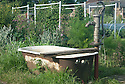 A traditional hand pump and an old re-used bath tub on an allotment site.
