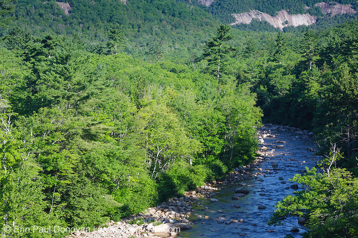Swift River in Albany, New Hampshire during the summer months. Located in the White Mountains region of New Hampshire, the Swift River originates in Livermore, and flows east for roughly 26 miles before joining the Saco River in Conway.