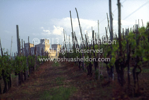 Castle and vineyards<br />