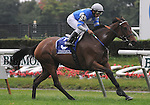 27 Sept 2008: Jockey Alan Garcia guides Dynaforce past the finish line for a wire-to-wire win in the Flower Bowl Invitational Stakes at Belmont Park in Elmont, New York on Jockey Club Gold Cup Day.